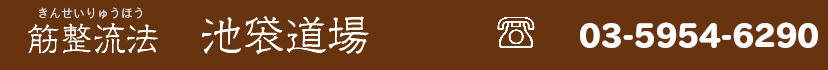 【池袋の整体院】筋整流法による治療 | 筋整流法東京支部道場の東京支部道場ブログ